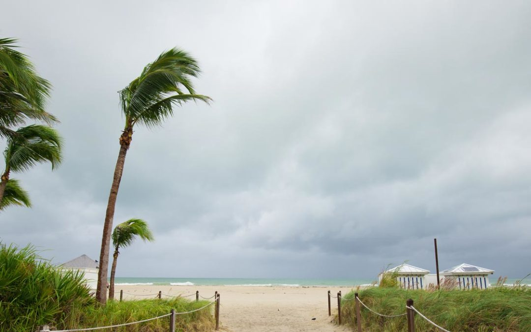 Storm Life in South Florida: Water Damage Doesn't Play Favorites