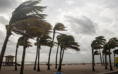 Who Helps with Hurricane Irma Home Insurance Claims in Boynton Beach?